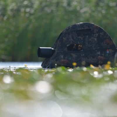 Floating Hide II